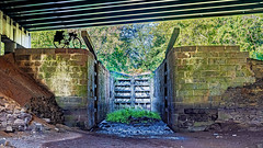 Lock 13 under the American Legion Bridge (I-495)