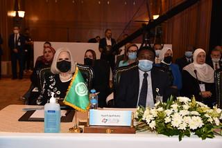 23- جامعة الدول العربية