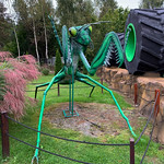 Photo of Park of Insects