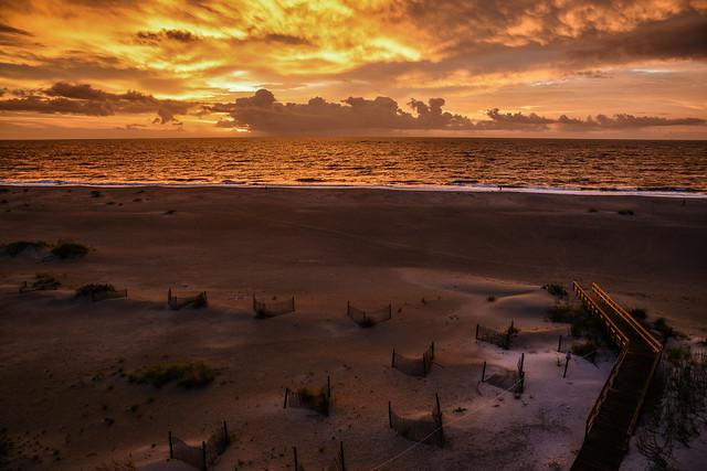 On Golden Shores