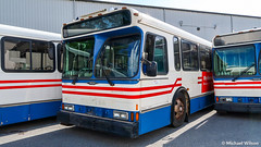 (Retired) WMATA Metrobus 1997 & 2000 Orion Vs