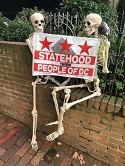 Statehood for the People of DC: skeletons with sign, Halloween display, 31 Street NW, Washington, D.C.