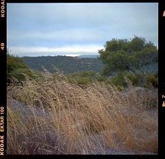 Fort Ord National Monument Hike