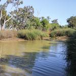 Isisford area, Yuranigh Ponds IMG_8545