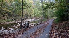 Holmes Run Trail