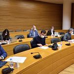 25-10-2021 Comissió d'Indústria i Comerç, Turisme i Noves Teconologies