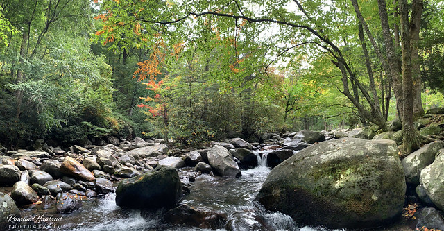 Photo:River pano at Chimney tops picnic area02 By Angelrays