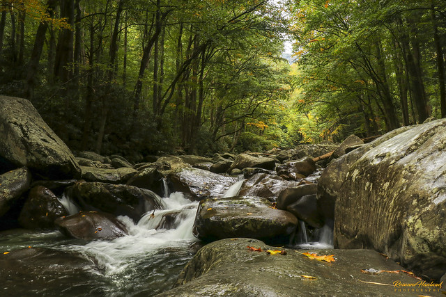 Photo:Little Pigeon River01 By Angelrays