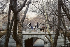 New York City Feb. 2002