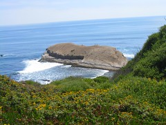 Our state California: the coastal areas