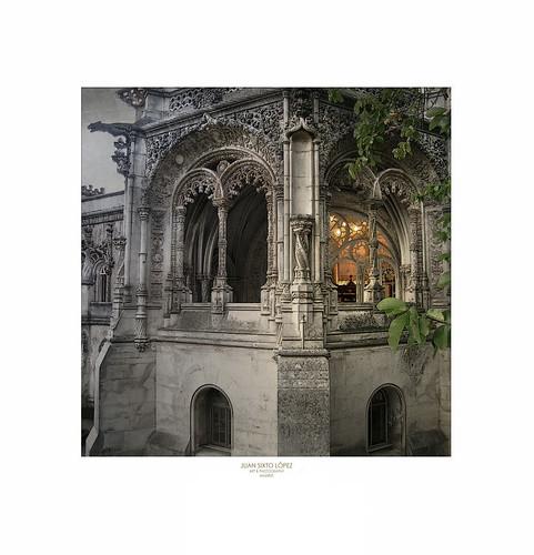 Buçaco. Portugal. Agosto 2005