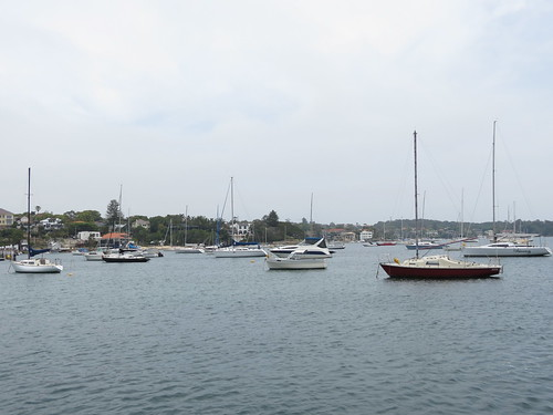 Watsons Bay, Sydney Harbour, New South Wales (483519)