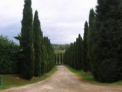 Ιταλια / Italia
